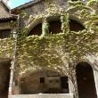 Maison du consul Châtillon-en-Diois